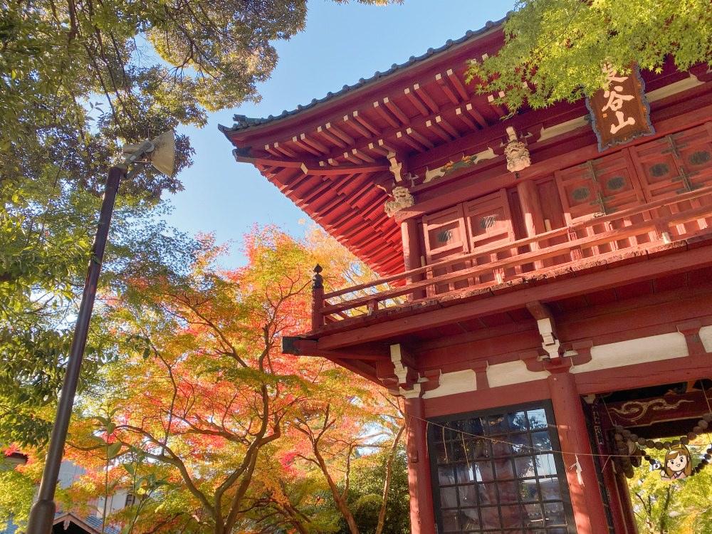 東京近郊觀光-千葉旅遊